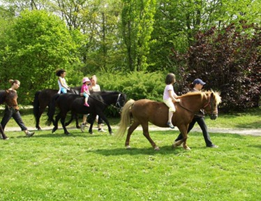 La Gavotte Animal Farm and Pony Club